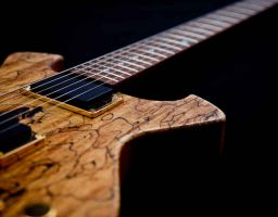 Spalted DC1